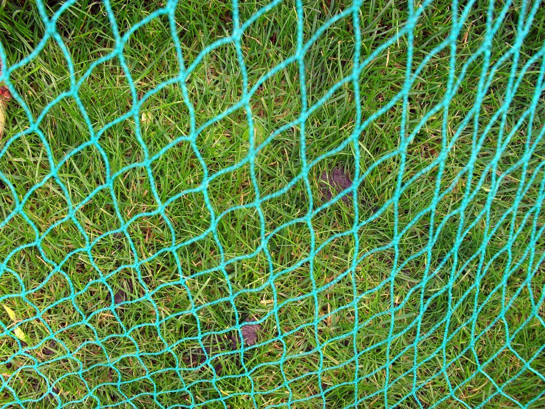 Butterfly bird fruit crop garden pond protection netting for Garden pool netting